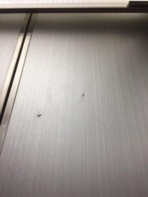 エレベーター壁補修