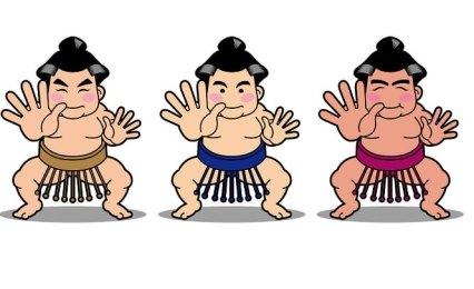 相撲 三役とは