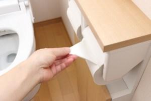 トイレットペーパー 溶ける 時間