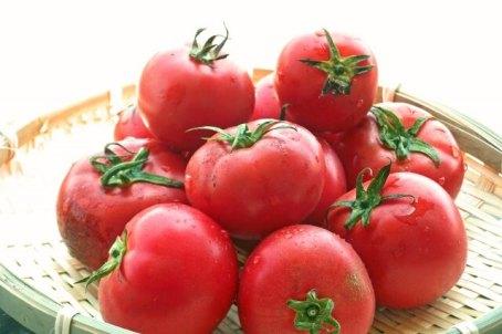 トマト 漢字
