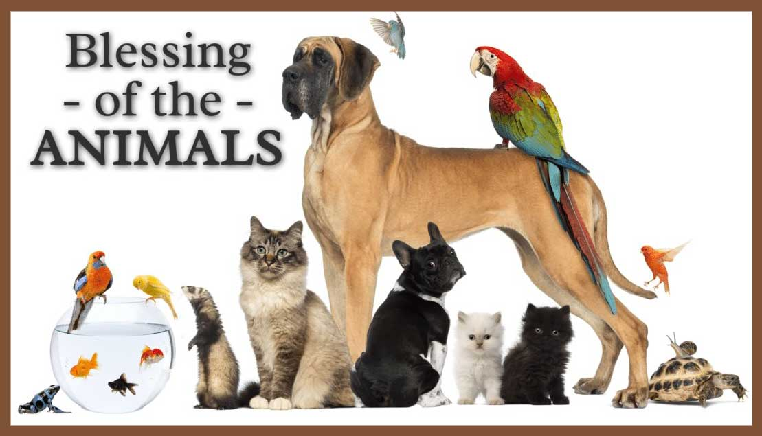 The Blessing of the Animals (Online)