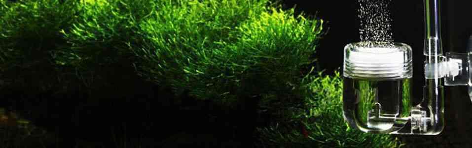Способы растворения СО2 в аквариуме