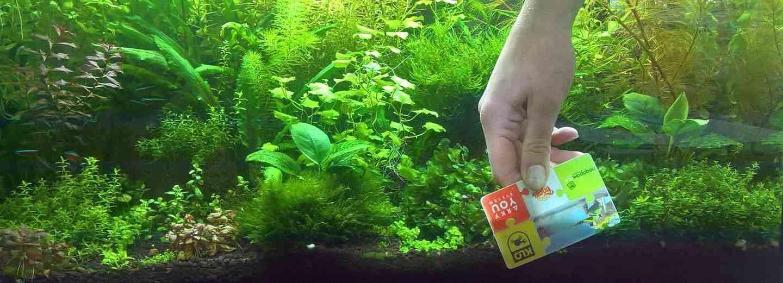 Чистка стекол пластиковой картой