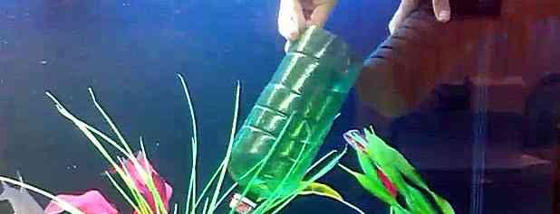 Как вынуть губку из аквариума без упавшей грязи
