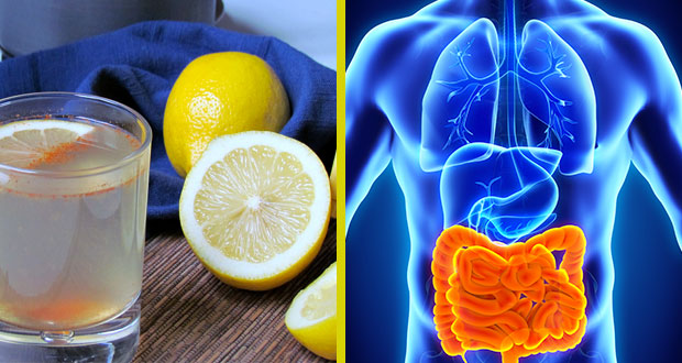 comment eliminer les toxines du corps