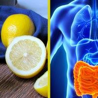Santé: Voici comment éliminer des kilos de toxines et déchets de votre organisme