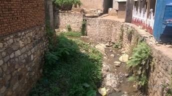 Environnement: l'évêque du diocèse d'Uvira lance un appel de protection de l'environnement