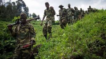 RDC: Une nouvelle rébellion serait opérationnelle au nord-est de la RDC