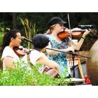 Soirée Cajun avec le Prairie Bayou Cajun Band