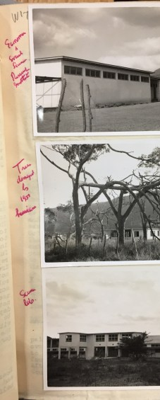A treasure trove of photos including UCWI buildings and damage from 1951 Hurricane Charlie. Priestley diaries in the Cadbury Library.