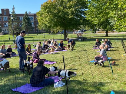 The staff from Duluth Goat Yoga offered a one hour beginner-friendly yoga class on the lawn behind the Yellowjacket Union on September 28, 2021. Photo by Lindsey Jalivay.