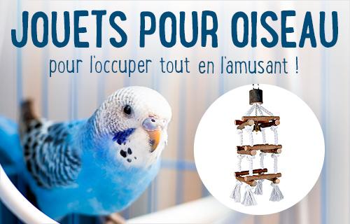 nourriture oiseaux accessoires oiseaux