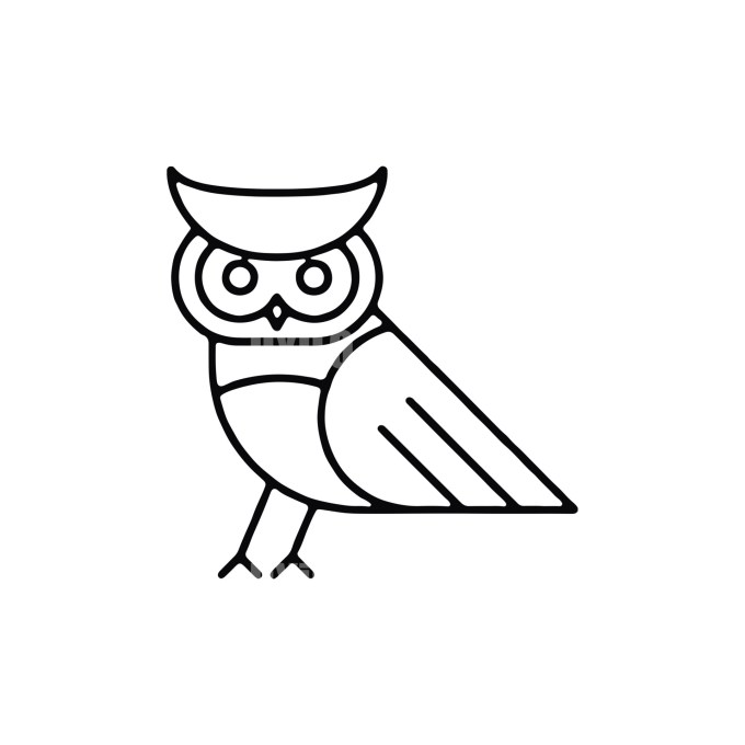 Owl -5 Minimal Logo