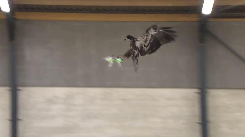 kartal-drone
