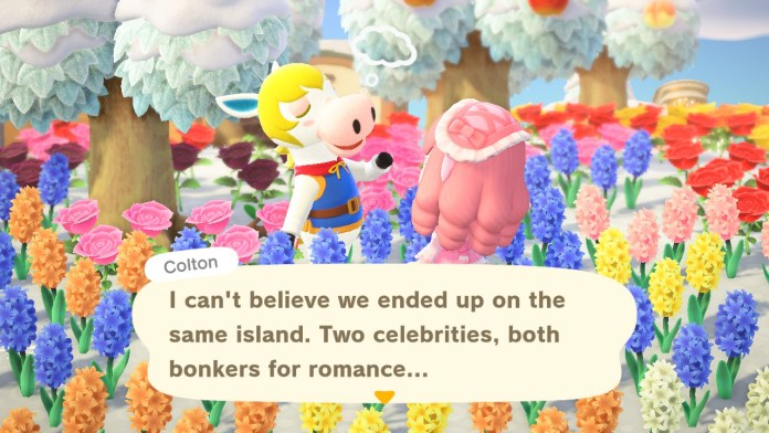 A screenshot from Animal Crossing New Horizons.