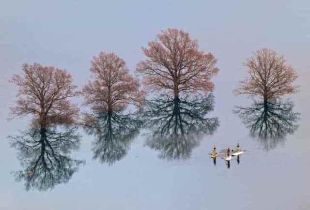 20 поразительных фотографий, сделанных без фотошопа