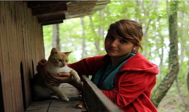 Маленький город, построенный… только для бездомных кошек!