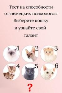Тест на скрытые способности, основанный на выборе кошки