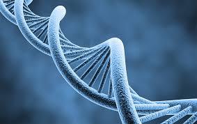 Новости из мира Генетики - идиотизм не является наследственным заболеванием