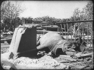 Город, который не смогли сломать: факты о Ленинградской блокаде