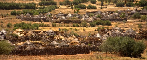 Karimajong people housing -Manyatta