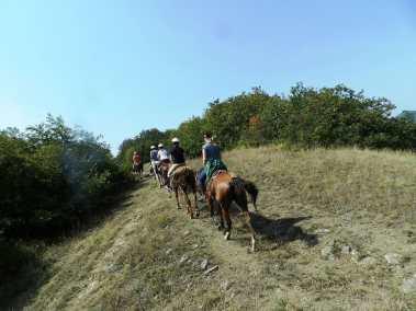 Прогулки на лошадях рядом с Тбилиси