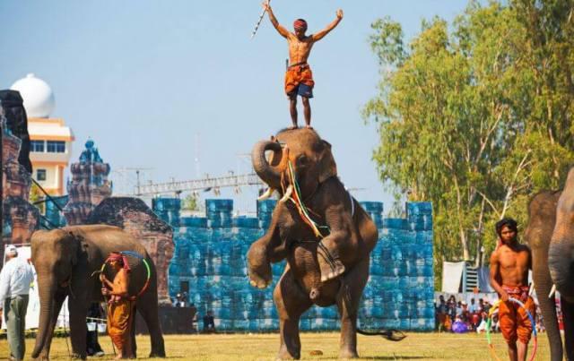 Шоу слонов в Тайланде