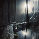mikko lagerstedt's photography