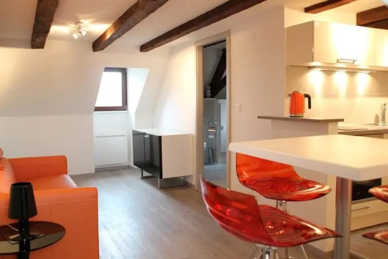 Locations appartements meubl    s Strasbourg     Location vacances appartement Strasbourg 1 480      Photo 2
