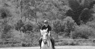 Cavalo e a depressão, by MAV