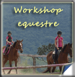 Workshop Equestre