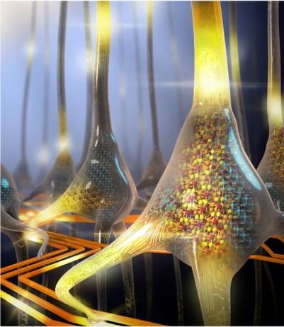 computação neuromórfica: neurônios como inpiração de processamento