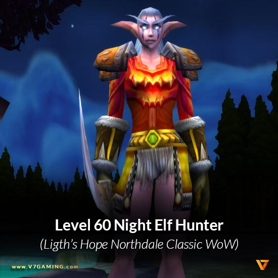 0035-lightshope-northdale-nightelf-female-hunter-60
