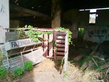 Fazenda_Ipanema-0049