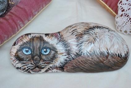 gatto sasso
