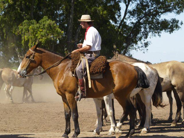 Montar en caballo con los famosos gauchos
