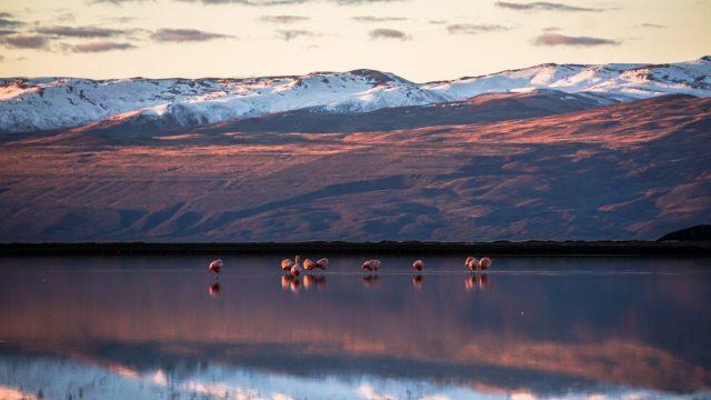 Lago Argentino, Calafate, Argentina