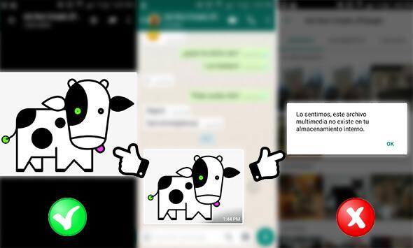 como recuperar fotos whatsapp