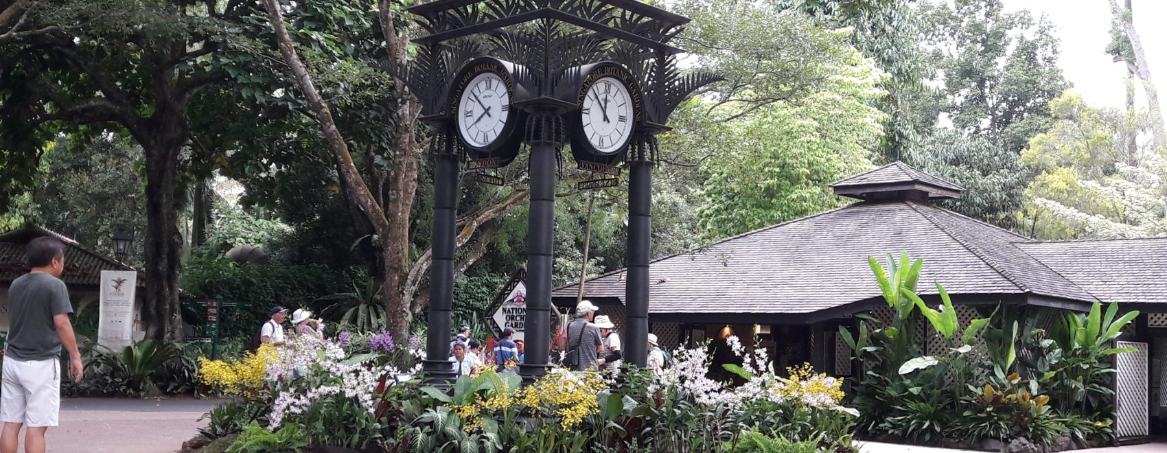 Gradina Botanica Singapore