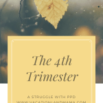 The 4th Trimester PPD