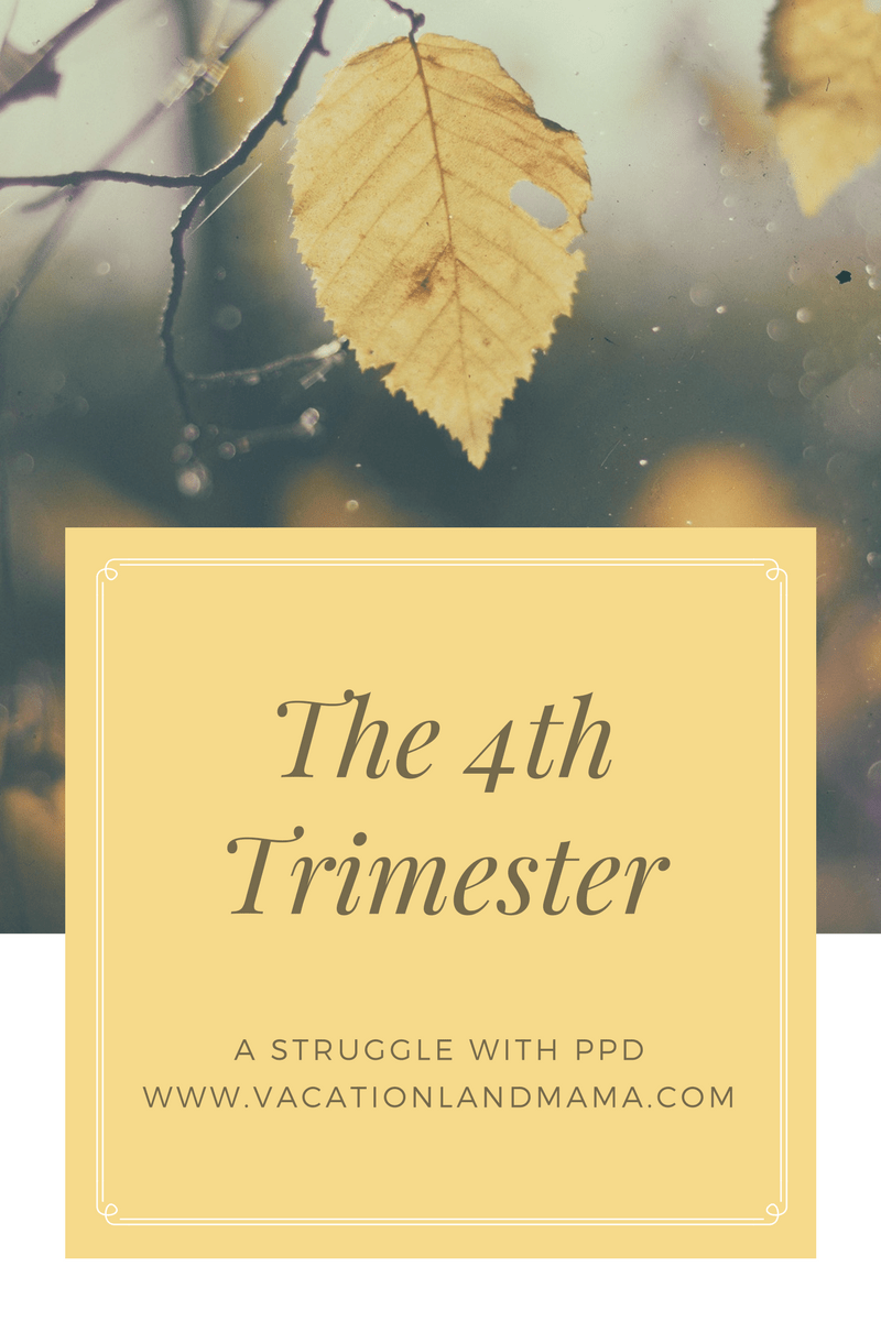 The 4th trimester