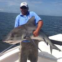 Catch & Release Of The Week, Bull Sharks!