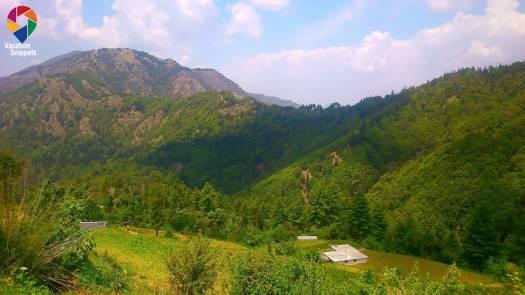 Pangot village view