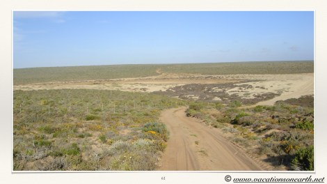 South Africa West Coast - Drive from Houthoop through the Namaqua and Skilpad National Park towards Cape Town.061