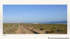 South Africa West Coast - Drive from Houthoop through the Namaqua and Skilpad National Park towards Cape Town.064