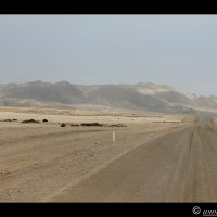 Day 6 - Skeleton Coast - 25 Sep 2013