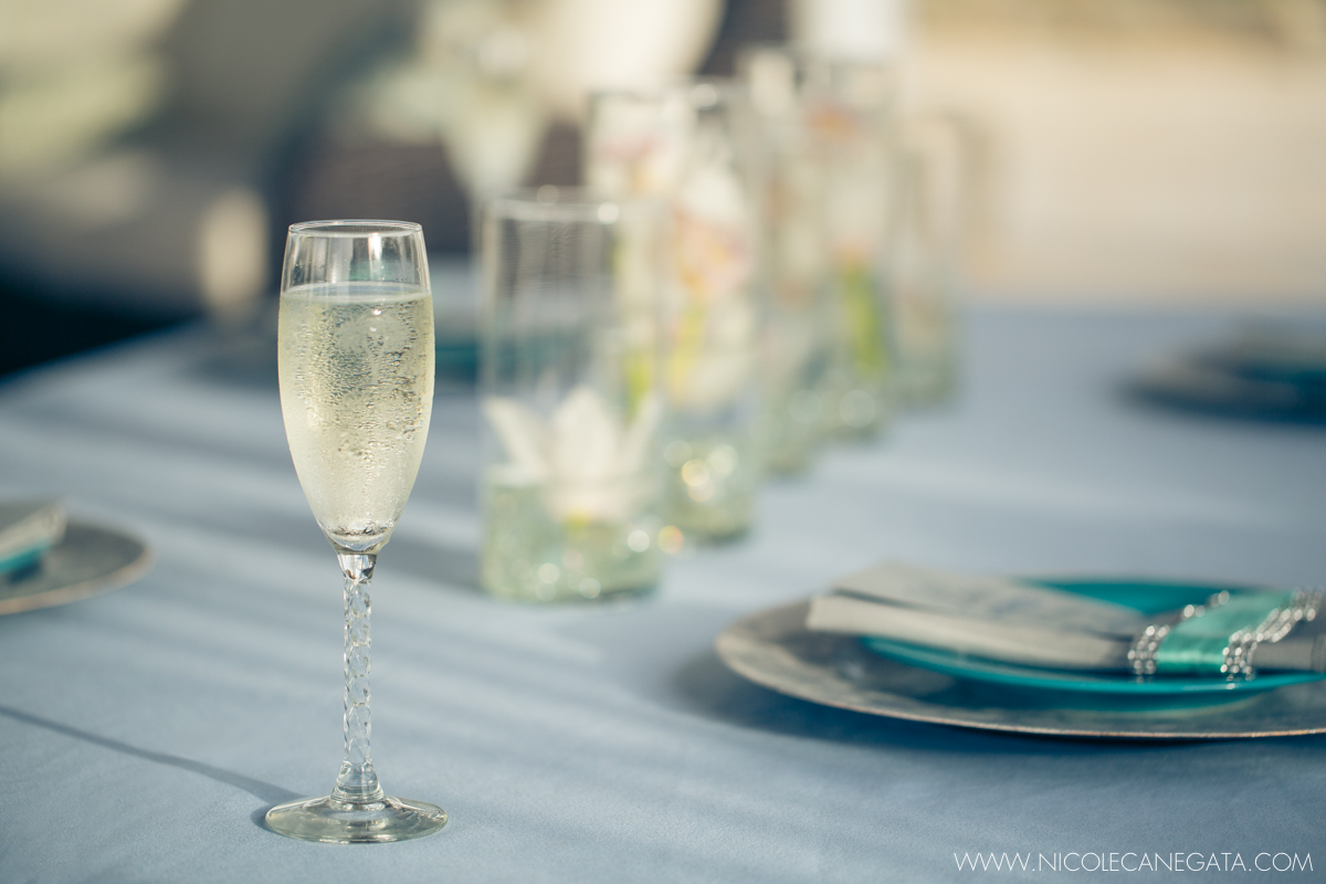 Clairmont Overlook Cinderella Wedding