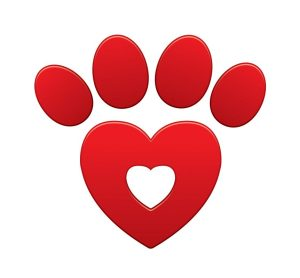 Sharing the Love, One Paw at a Time