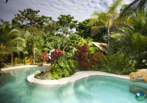 Azania Bungalows Pool