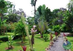 Siatami Lodge Garden View